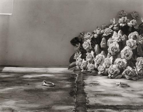 An analysis of ansel adams distinctive style of photography as an art