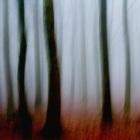 004-Winter_Mist