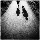 web_Never-walk-alone