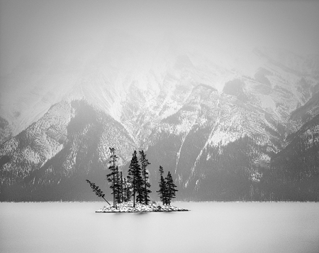 14 trees, Lake Minnewanka, Banff National Park