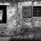 1-IMG_0547 The farm windows 20-10-2013