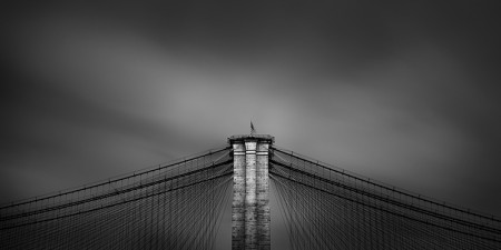 Thibault ROLAND - Brooklyn Bridge Wires