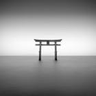 Shirahige Jinja Study 2